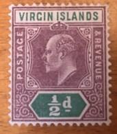 Virgin Islands - MH* - 1904 - # 29 - British Virgin Islands