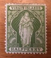 Virgin Islands - MH* - 1899 - # 21 - British Virgin Islands