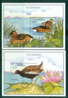 Gambia 1995 Birds, Waterbirds 2x MS MUH - Gambia (1965-...)