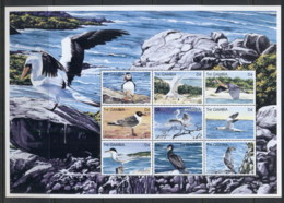 Gambia 1999 Seabirds Sheetlet MUH - Gambia (1965-...)