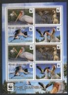Gambia 2011 WWF Yellow Bellied Stork Sheetlet MUH - Gambia (1965-...)