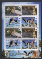 Gambia 2011 WWF Yellow Billed Stork MS MUH - Gambia (1965-...)
