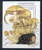 Guinee 1995 Funghi, Mushrooms MS CTO - Guinea (1958-...)