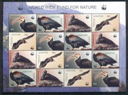 Lesotho 2004 WWF Southern Bald Ibis, Bird Sheetlet MUH - Lesotho (1966-...)