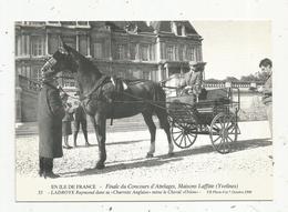 Cp , Sports , équitation , Finale Du Concours D'attelages , Maisons Laffitte , R. Ladroye , Cheval : Orio ,1990n - Hippisme