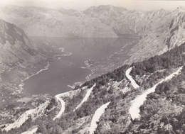 EX YOUGOSLAVIE,jugoslavija,MONTENEGRO,prés Croatie,BOKA KOTORSKA,BOUCHES DE KOTOR,CATTARO,CARTE PHOTO RARE - Montenegro