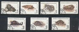 Madagascar 1992 Molluscs CTO - Madagascar (1960-...)