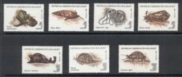 Madagascar 1993 Molluscs MUH - Madagascar (1960-...)