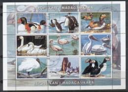 Madagascar 1999 Waterbirds MS CTO - Madagascar (1960-...)