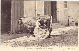 Bourg Paysanne De La Bresse - Non Classés