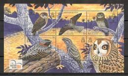 D402 SOLOMON ISLANDS FAUNA BIRDS BIRDLIFE 1KB MNH - Owls
