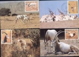 Niger 1985 WWF Desert Antelope Maxicards - Niger (1960-...)