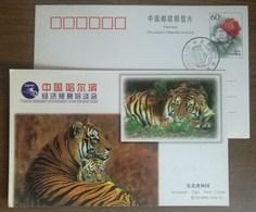 Northeast Tiger Safari Park,China 1999 Harbin Economic And Trade Fair Advertising Pre-stamped Card - Big Cats (cats Of Prey)