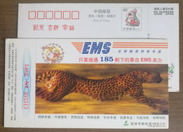 Running Leopard,China 1999 Hangzhou Post EMS Delivery Company Advertising Pre-stamped Card - Félins