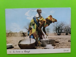 La Lessive Au Senegal - Senegal