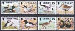 Jersey 1997 Tiere Fauna Animals Vögel Birds Oiseaux Aves Uccelli Seevögel Seabirds Watvögel Waders, Mi. 765-2 ** - Jersey