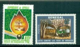 Senegal 1977 Prevention Of Forest Fires MLH Lot73541 - Senegal (1960-...)