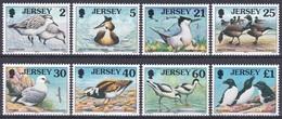 Jersey 1998 Tiere Fauna Animals Vögel Birds Oiseaux Aves Uccelli Seevögel Seabirds Watvögel Waders, Mi. 813-0 ** - Jersey