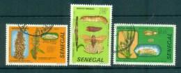 Senegal 1982 Destructive Insects FU Lot73561 - Senegal (1960-...)