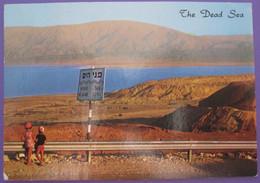 ISRAEL PALESTINE DEAD SEA MAR MUERTO DESERT MOUNTAIN JORDAN BEACH PICTURE POSTCARD PHOTO POST CARD PC STAMP - Israel
