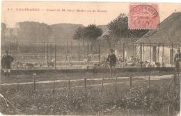 ***  10  ***  VILLENAUXE Chenil De M Henri Baillet Petit Pli - Francia