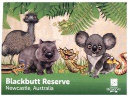 (900) Australia - NSW - Newcastle Blackbutt Reserve (animals) - Newcastle