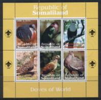 Somaliland 2010c. Birds, Doves Of The World MS CTO - Somalia (1960-...)