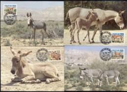 S_uda_n 1994 African Wild Ass Maxicards - Sudan (1954-...)