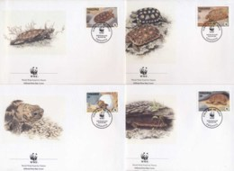 Tanzania 1993 WWF Pancake Tortoise FDC - Swaziland (1968-...)