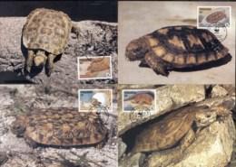 Tanzania 1993 WWF Pancake Tortoise Maxicards - Swaziland (1968-...)