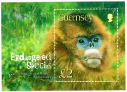 GUERNESEY - BLOC N°53 ** (2004) Singe - Guernsey