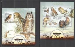 D623 2013 TOGO WILD FAUNA OF AFRICA BIRDS OWLS HIBOUX KB+BL MNH - Owls