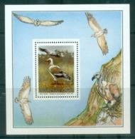 Transkei 1992 Birds Waterfowl MS MUH - Transkei