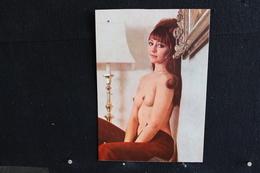 19 - P-up / Carte - Photo /  Pin-Up  -  SAM  -  Modèle  Nue,  Daily Girl Press  /  Circulé   .- - Pin-Ups