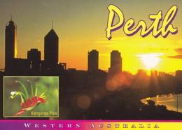 Postcard Perth Western Australia Sunrise From Kings Park My Ref  B23085 - Perth