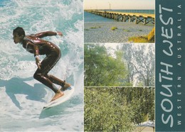 Postcard Western Australia Surfer Busselton Forest Near Pemberton Margaret River Hotel  My Ref  B23087 - Perth
