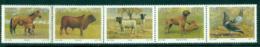 South Africa 1990 Animal Breeding Str 5 MUH Lot35333 - South Africa (1961-...)