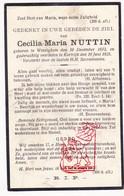 DP Cecilia M. Nuttin ° Wevelgem 1873 † Kortrijk 1925 - Devotion Images