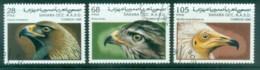 Sahara Occidental 1996 Birds Of Prey CTO - Stamps