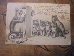 Singe Animant Theatre Guignol Devant Public Composé De Chat  Marionette Polichinel  Carte Gaufrée - Katten