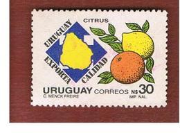 URUGUAY  - SG 1941   - 1988   EXPORTS: CITRUS   -  USED° - Uruguay