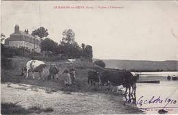 LE MANOIR-sur-SEINE - Vaches à L'Abreuvoir - Animé - Carte Peu Fréquente - Le Manoir
