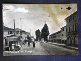 VENETO -TREVISO -PREGANZIOL -F.G. - Treviso
