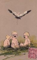 Enfants, Nid, Cigogne. - Children