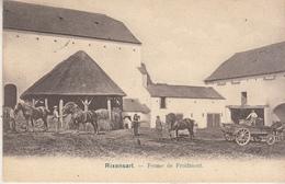 Rixensart - Ferme De Froidmont - Animé - 1904 - Edit. Doyen, La Hulpen° 135 - Rixensart