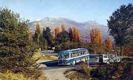 TRANSPORTS  L 41   AUTOCAR  /   CPM / CPSM  10 X 15 - Buses & Coaches