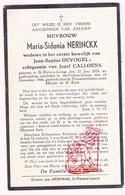 DP Maria S. Nerinckx ° Sint-Pieters-Leeuw 1878 † 1948 X JB. DeVogel Xx J. Calloens - Devotion Images