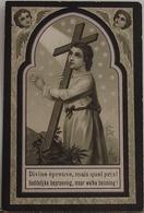 Alphonsus Vitalis Embrechts-lubbeek 1903 - Devotion Images