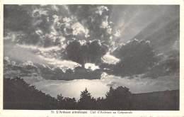 Ciel D'Ardenne Au Crépuscule - België