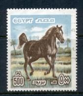 Egypt 1978-85 Horse, Arabian Stallion 500m FU - Egypt